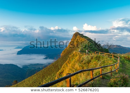 phu chi fa forest park at sunset thailand stock photo © yongkiet