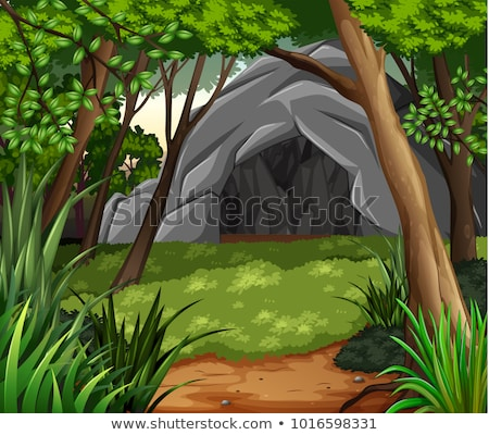 Lasu scena jaskini drzew ilustracja wody Zdjęcia stock © bluering