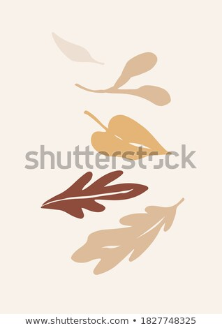 Orange Blot And Autumn Leaves Stock photo © barbaliss