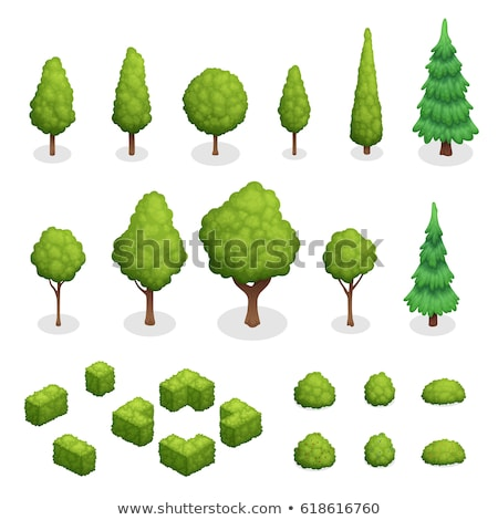 Decorative green tree isometric 3D element stock photo © studioworkstock