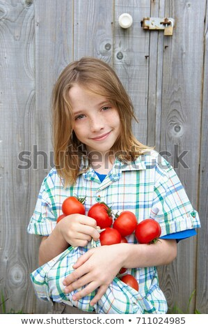 Child carrying tomatoes in shirt Stock photo © IS2