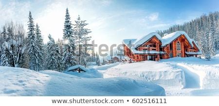 Jelenet ház téli tájkép tél illusztráció tájkép Stock fotó © colematt
