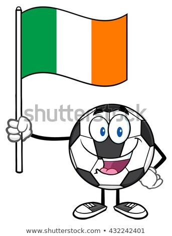 Gelukkig voetbal cartoon mascotte karakter vlag Stockfoto © hittoon