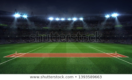 Cricket Pitch Ball And Wickets Stock photo © albund