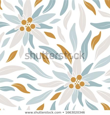 kék · virágok · legelő · fehér - stock fotó © cookelma