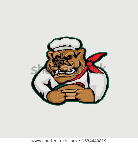 cartoon angry chef bear stock photo © cthoman