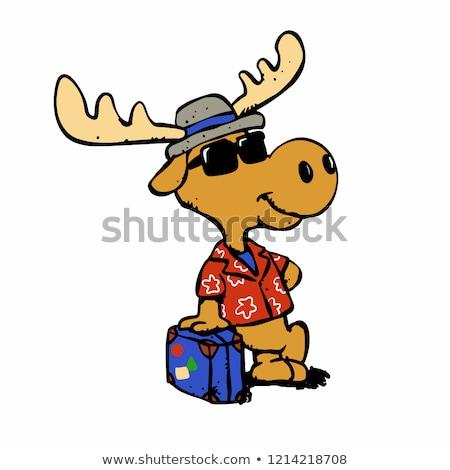 Cartoon Moose occhiali da sole illustrazione indossare Foto d'archivio © cthoman