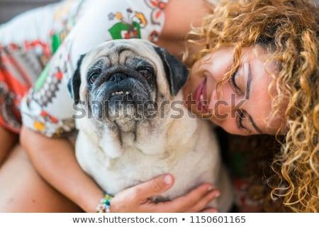 Laide chien hug cartoon illustration prêt Photo stock © cthoman