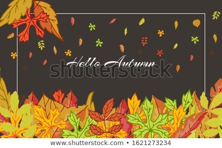 Najaar illustratie vallen bladeren donkere Rood Stockfoto © articular
