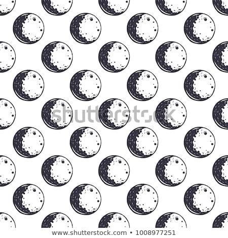 Lua monocromático vintage projeto Foto stock © JeksonGraphics