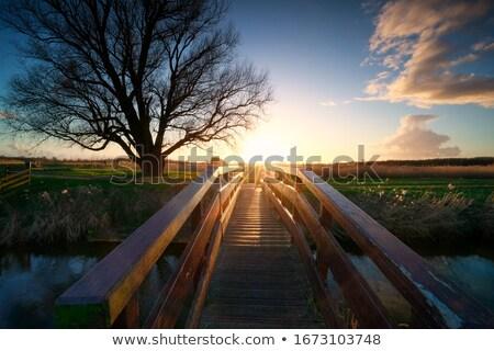 Dawn over the bridge Stock photo © Givaga