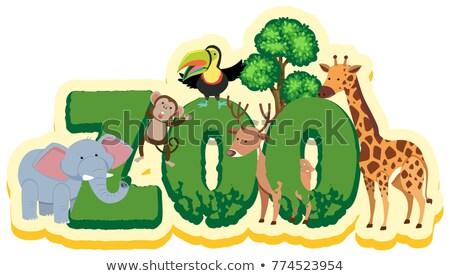 betűtípus · terv · szó · majmok · illusztráció · természet - stock fotó © colematt