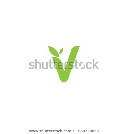 letter v with leaf logo icon vector symbol Stock photo © blaskorizov