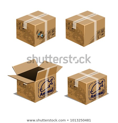 Set of carton boxes for transporting animals isolated on white background. Vector cartoon close-up i Stock photo © Lady-Luck