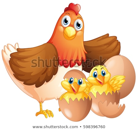 Mother hen and two chicks Stock photo © colematt
