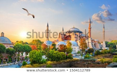 Sirályok nap Isztambul Törökország égbolt nap Stock fotó © Givaga