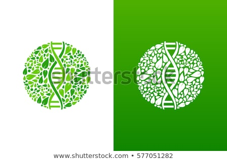 Photo stock: ADN · génétique · icône · arbre · feuilles · vertes · usine