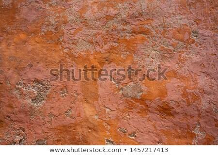 Balearic islands Ibiza orange wall texture Stock photo © lunamarina