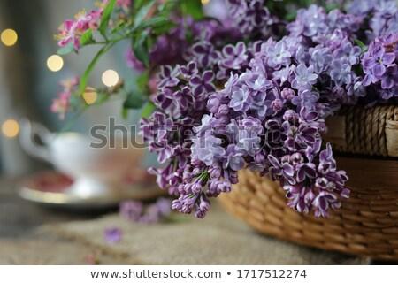 Foto stock: Frescos · lila · flores · frontera · espacio · de · la · copia