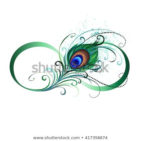 Oneindigheidssymbool pauw veer zwarte contour Stockfoto © blackmoon979