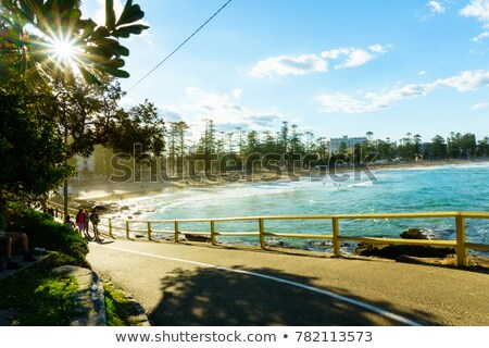 Views of Manly and Shelly Beach Stock photo © lovleah