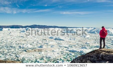 ártico natureza paisagem vídeo Foto stock © Maridav