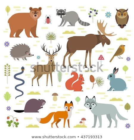 Cute северный олень прозрачность Cartoon иллюстрация праздник Сток-фото © tilo