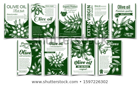 Olives Original Organic Product Poster Set Vector Stock photo © pikepicture