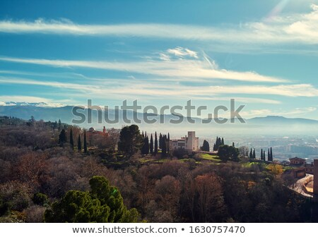 Aerial photo of Granada cityscape and view to Sierra Nevada snow Stock photo © amok
