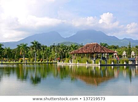 Taman Tirtagangga, Water palace, Water park, Bali, Indonesia Stock photo © galitskaya