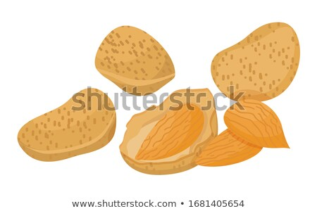 Heap of Peeled Almonds, Brown Nuts Inside Nutshell Stock photo © robuart