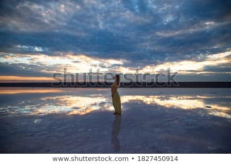 Beauty sunset on salty lake Stock photo © olira