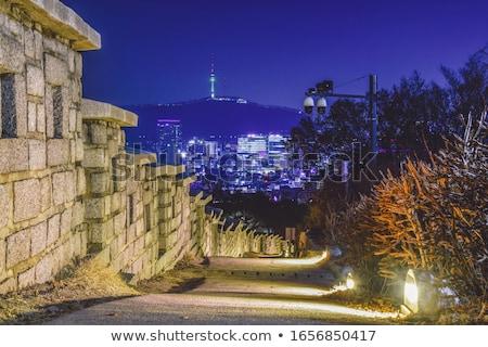 Seoul night view, South Korea Stock photo © dmitry_rukhlenko