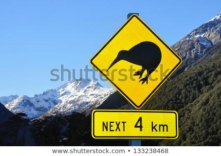 Новая · Зеландия · шоссе · знак · зеленый · облаке · улице · знак - Сток-фото © kbuntu
