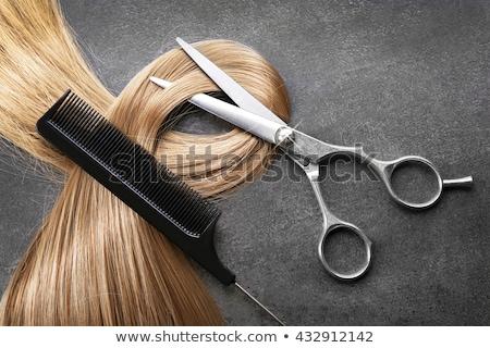 makas · saç · logo · güzellik · sanayi - stok fotoğraf © experimental