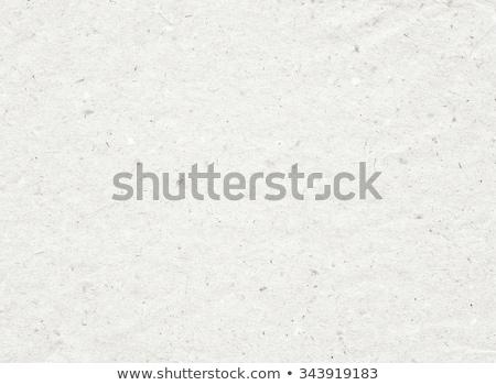 recycleren · tekst · gescheurd · papier · aarde · vel · gesneden - stockfoto © stoonn