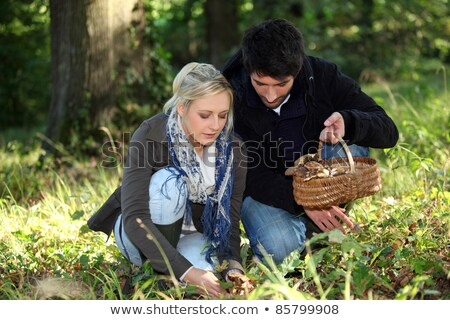 Stock photo: Couple gathering mushrooms in a forest