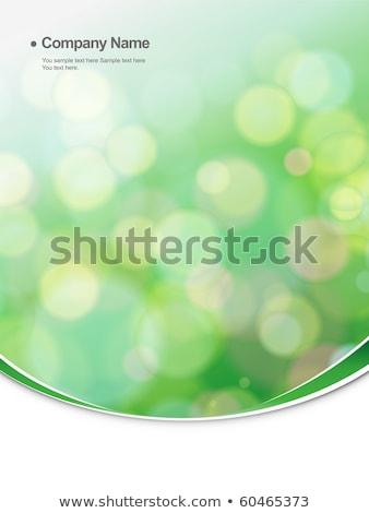 Foto stock: Abstrato · eco · corporativo · negócio · flor