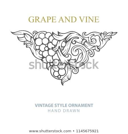 Bağbozumu şarap süsler manzara çerçeve sanat Stok fotoğraf © Kaludov