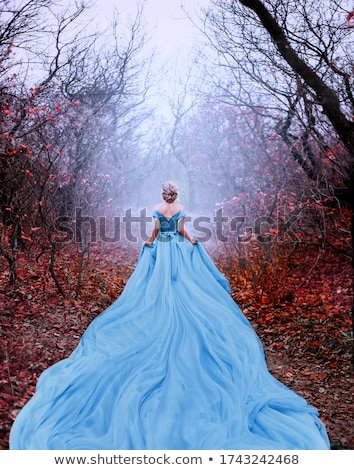 Lung rochie frumos roşu frumuseţe Imagine de stoc © choreograph