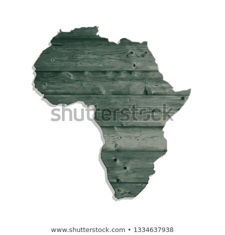 African continente legno animali arte Foto d'archivio © EcoPic