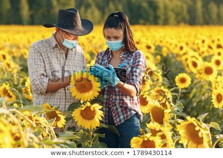 a couple of farmers in a sunflowers field Stock photo © photography33