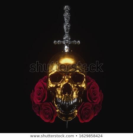 кинжал символ изолированный белый прав Сток-фото © shutswis