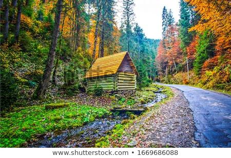 oud · hout · cabine · Blauw · meer · oude · verlaten - stockfoto © nikdoorg