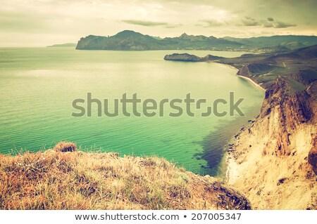 dourado · luz · montanhas · céu · natureza · árvores - foto stock © acidgrey