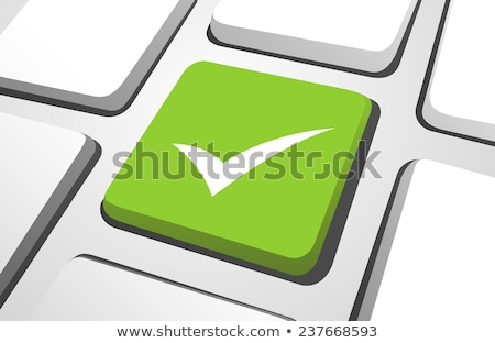 Green OK Computer Key Stock photo © franky242