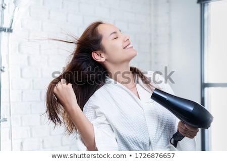 hair dryer on white Stock photo © ozaiachin