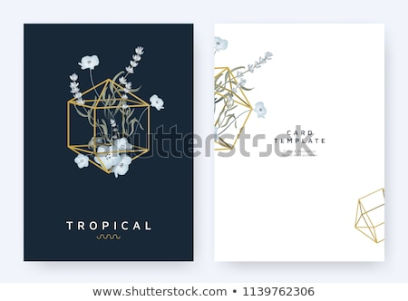 Stock photo: Diamond greeting card, vector illustration