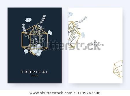 gyémánt · kártya · vektor · divat · terv · keret - stock fotó © carodi