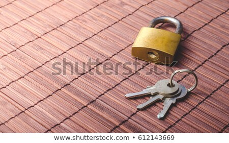 Yellow padlock and keys Stock photo © deyangeorgiev